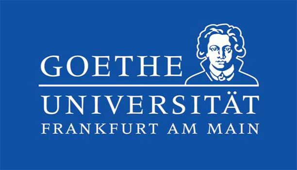 Goethe Goes Global Masters Scholarship