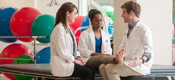 Physical Therapist Education Requirements
